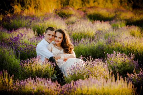 Sesja ślubna w Lawendzie o zachodzie słońca to bardzo dobre rozwiązanie na plener w czerwcu i lipcu.